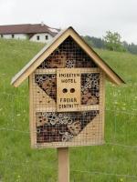 Insektenhotel4